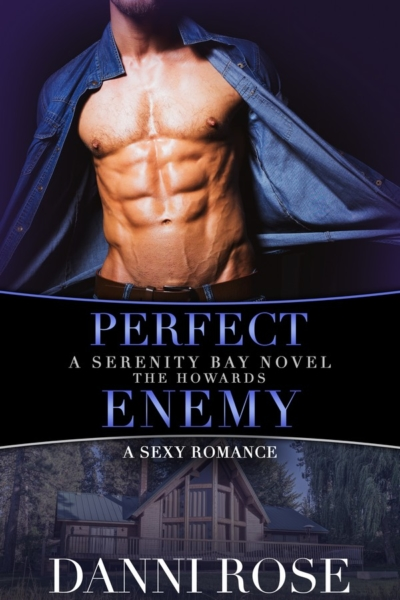 Perfect Enemy Book Cover